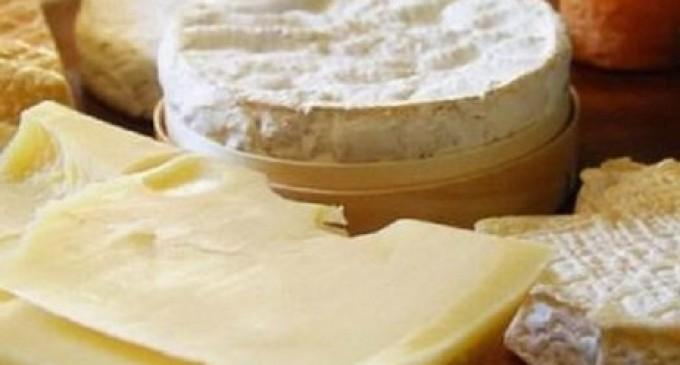 Casi di Sindrome Emolitico Uremica da consumo di prodotti a base di latte dalla Romania