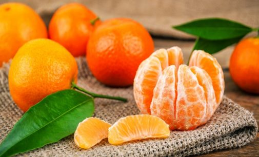 Tutta la filiera promuove le clementine italiane